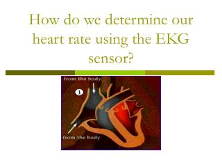 How do we determine our heart rate using the EKG sensor