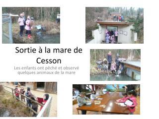 Sortie � la mare de Cesson