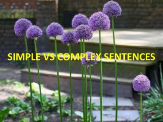 SIMPLE VS COMPLEX SENTENCES