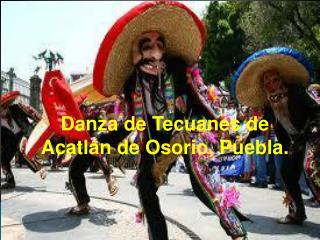 Danza de  Tecuanes  de Acatlán de Osorio,  Puebla.