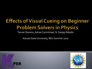 Effects of Visual Cueing on Beginner Problem Solvers in Physics