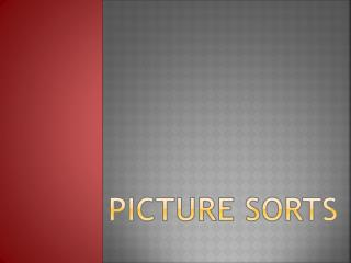 Picture Sorts