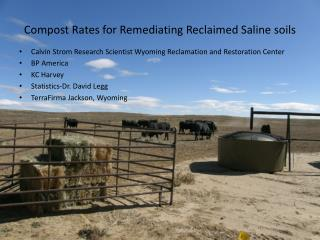Compost Rates for Remediating Reclaimed Saline soils