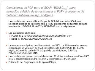 100bp  DNA  Ladder LOP-868 Bulk-S1 Bulk-S2 Bulk-S3 Bulk-R1 Bulk-R2 Bulk-R3 Bulk-R4 Bulk-R5 Bulk-R6