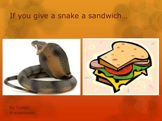 If you give a snake a sandwich…