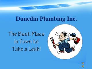 Dunedin Plumbing Inc.