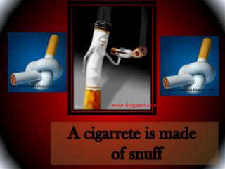 A cigarrete is made   of snuff