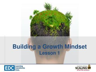 Building a Growth Mindset Lesson 1