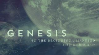 In the beginning...mankind 1:26-31 & 2:4-17