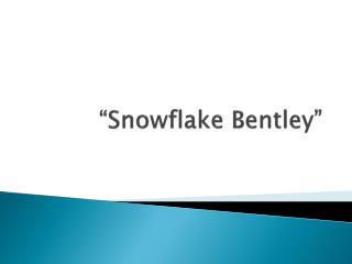 �Snowflake Bentley�