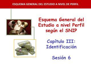 Esquema General del Estudio a nivel Perfil según el SNIP Capítulo III: Identificación Sesión  6