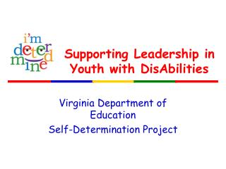 Supporting Leadership in Youth with DisAbilities