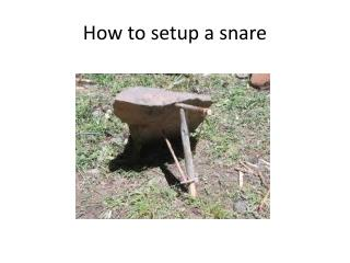 How to setup a snare