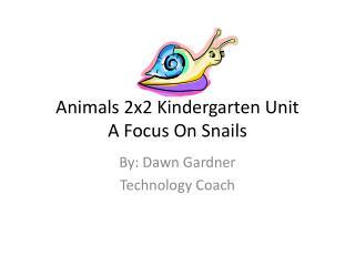 Animals 2x2 Kindergarten Unit A Focus On Snails