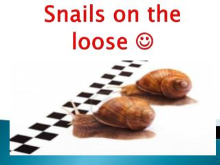 Snails on the loose  