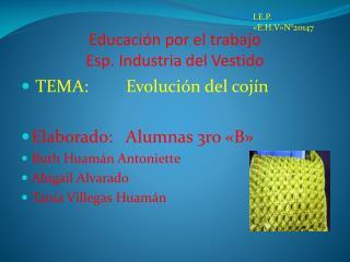 Educación por el trabajo Esp. Industria del Vestido