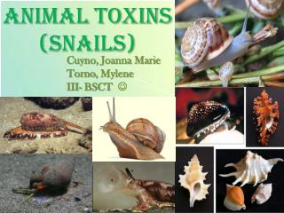 ANIMAL TOXINS  (SNAILS)