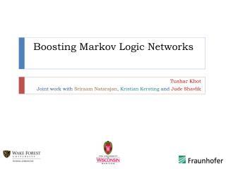 Boosting Markov Logic Networks