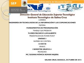 Dirección General de Educación Superior Tecnológica Instituto Tecnológico de Salina  C ruz