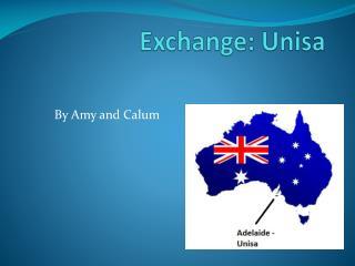 Exchange:  Unisa