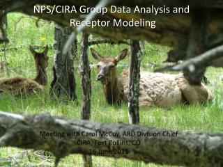 NPS/CIRA Group Data Analysis and  Receptor Modeling
