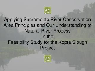 "Kopta  Slough Flood Damage Reduction and Habitat Restoration Project  "" Kopta  Slough Project """