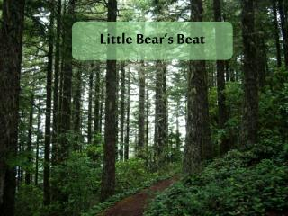 Little Bear's Beat
