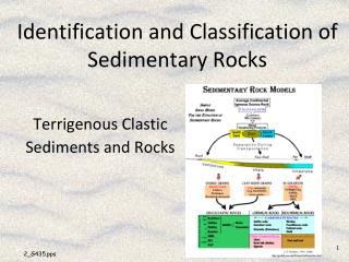 Identification and Classification of Sedimentary Rocks