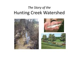 The Story of the                                          Hunting Creek Watershed