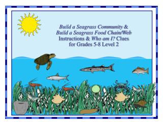 This presentation contains the Instructions for conducting the Build a Seagrass Community and Build a Seagrass Food Chai