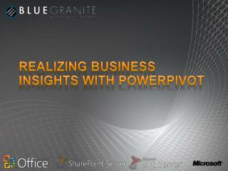 Realizing Business Insights with PowerPivot