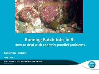 Running Batch Jobs in R: How to deal with coarsely parallel problems