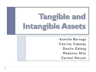 Tangible and Intangible Assets