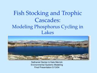 Fish Stocking and Trophic Cascades:  Modeling Phosphorus Cycling in Lakes