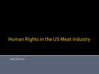 Human Rights in the US Meat Industry