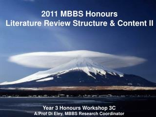2011 MBBS Honours  Literature Review Structure & Content II