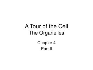 A Tour of the Cell The Organelles