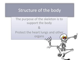 Structure of the body