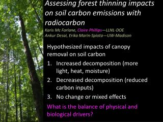 Hypothesized impacts of canopy removal on soil carbon