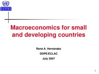 Macroeconomics for small and developing countries