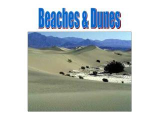 Beaches  Dunes