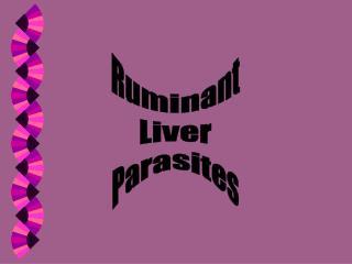 Ruminant Liver Parasites