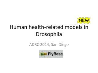 Human health -related models in Drosophila
