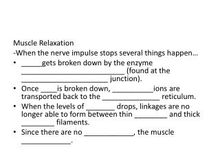 Muscle Relaxation -When  the nerve impulse stops several things happen…