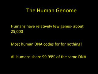 The  H uman Genome