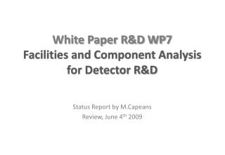 White Paper R&D WP7 Facilities and Component Analysis for Detector R&D