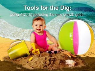 Tools for the Dig: