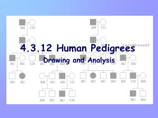 4.3.12 Human Pedigrees