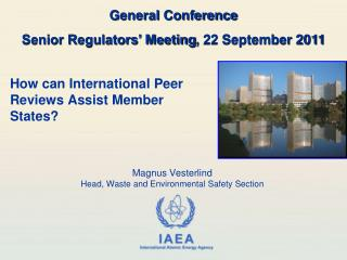 How can International Peer Reviews Assist Member States?
