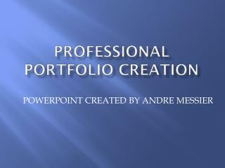PROFESSIONAL PORTFOLIO CREATION